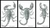 scorpioni.png