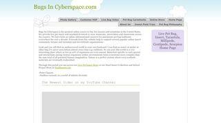 Bugs in Cyberspace