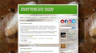 Invertebrate Dude