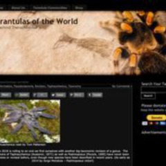 Tarantulas of the World - Caresheets and Information