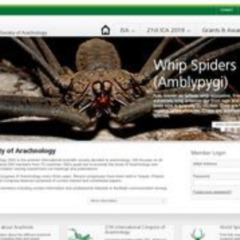 International Society of Arachnology