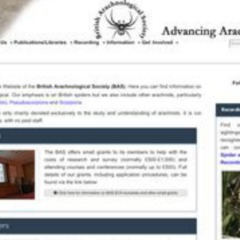 British Arachnological Society