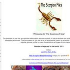 The Scorpion Files
