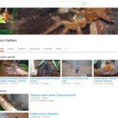 Ron's Spiders