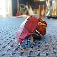 Origami Scarab [2/3]