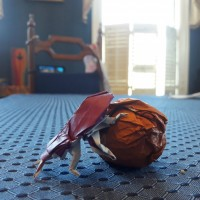 Origami Scarab [3/3]